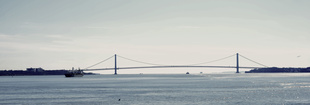 New York,  Verrazano Narrows bridge