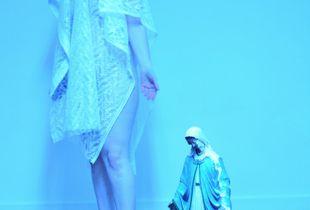 Shrouded Consciousness, 2013, digital print © Maureen Considine