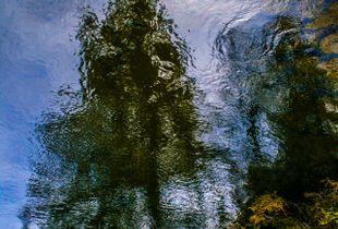 Liquid Sky 01