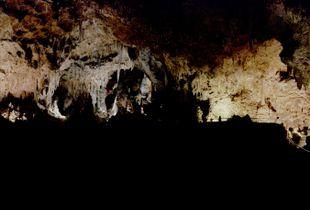 Gossamer Illusions of the Night