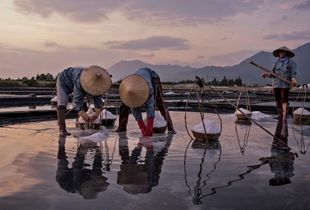 The Salt Field Workers