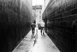 Alley Rain