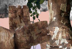 Amalgamated Fragmentation / Plastisphere–Plant 2