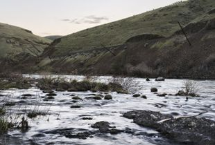 Fallen Lines, Near the Confluence of the Deschutes & the Columbia, Oregon