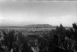 Sagebrush e in distanza Walking Cloud Ranch