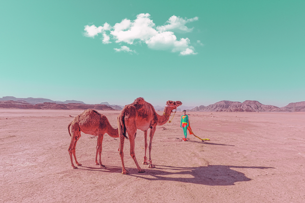 Superman with Camels
