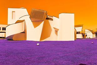 Surrea architecture #9