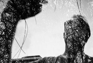 La naturaleza corre por mis venas.Sentirme unido a los arboles, a través de una imagen tomada por mi, de esta forma, es una gran sensación.