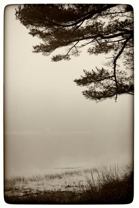 Morning Fog Over Little River Gloucester, MA USA