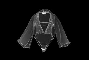 X-Ray Simulation Photography