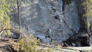 Video Still, Camouflage No.1 (Rock)