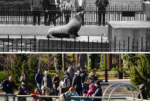 Central Park Zoo 1967 - 2014
