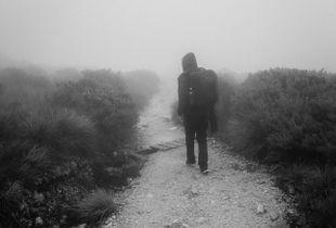 Walk Quietly #5