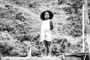 Caribbean Curiosity