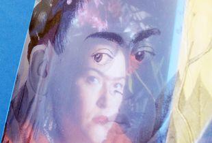 Frida transmutación