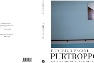 Purtroppo ti amo, Federico Pacini