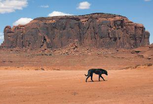 Navajo Nation Monument Valley, Arizona