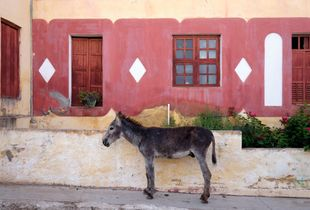 Facade and a Mule