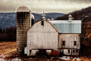 Farm1-Delaware County