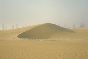 Photo #1 from the series Oasis
