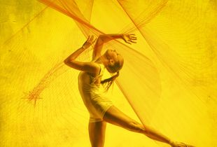 Study in Yellow