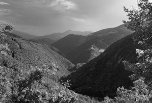 #panorama01