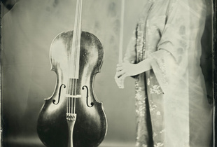 Cello#01 -  Wet Plate Collodion 8x10 -  20 s. exposure  -