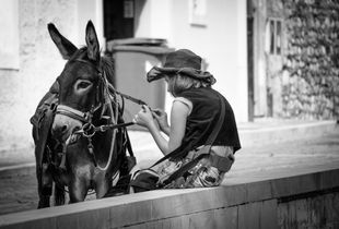 The little girl and the Donkey