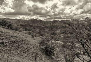 Lush Green Hills Above Joba Arriba