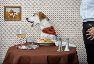 The Country Club | Dining Alone Series