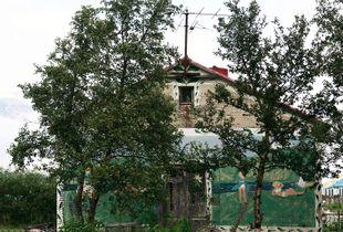 Desolation- Tree house