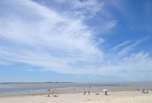 The Crotoy beach in summer.        (Baie de Somme)