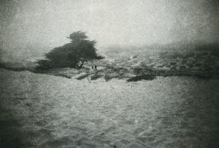 Anchors dragged through faithless sand