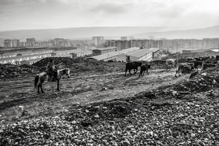 Outskirts of the capital, Tbilisi