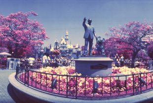Walt's Magic Kingdom