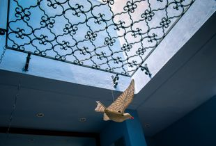Skylight with dove.