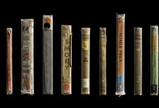 Multiple Spines (All About Dinosaurs, Jenny's Birthday Book, The Family Treasury of Childrens' Stories, A Light in the Attic, Smoky, The House on a Cliff, Tabitha Dingle, Homer Price, Uncle Walt, Daniel Boone Boy Hunter, The Book of Nah-Wee) © Kerry Mansfield