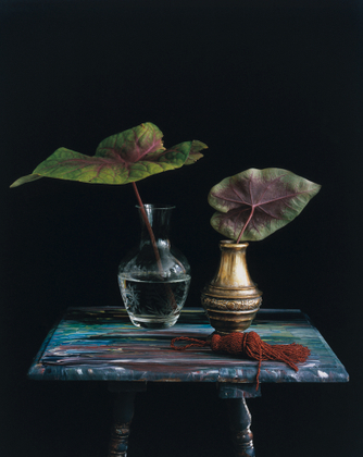 Still Life with Two Fittonia Albivenis Leaves and a Red Tassel, Studio,                             NYC