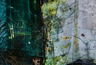 Broken Glass, Town Hill, Maine, 2014, © Alan Henriksen