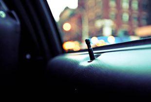 Backseat Romance, 2009