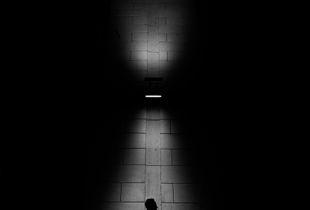 encounters of light