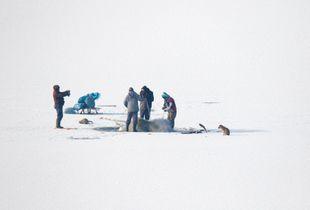 Ice fishing with dog