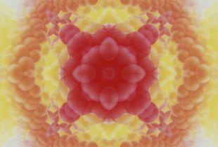 Patterns on Polaroid III