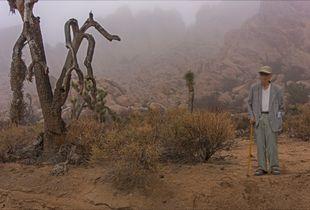 Tourist In The Mist