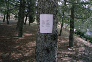 Poem by Frederico García Lorca pinned on Tree. Between Viznar and Alfracar, Andalucia, Spain. 2011