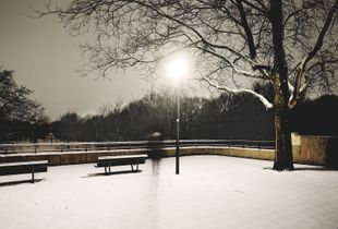 Night Journey © Joris van Egmond