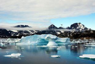 Greenland Landscape - © Adel Korkor