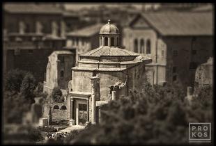 """<a href=""""https://andrewprokos.com/photo/forum-romanum-ancient-senate/"""">Forum Romanum - Ancient Senate</a>"""