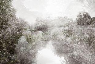 Possible Landscapes : Braake VI