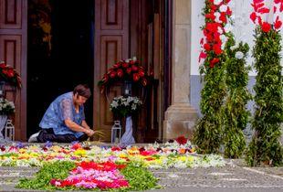 flower carpets 2